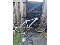 Carrera Valour Mountain Bike (white)