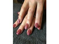 Hands and Feet by Diane- Mobile Nail Technician- Shellac-Gel-Polish