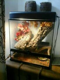 Exo terra large viv with 2 canopies an lights