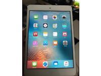 iPad mini 64gb cellural