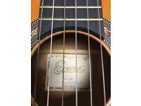 Classical Guitar Encore RCG50N