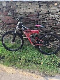 Silver Fox mountain bike