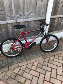 Unisex Child's Raleigh Bike