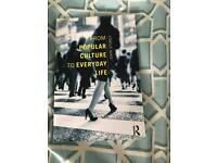 From popular culture to everyday life book