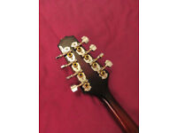 Used Johnson MA-130E electric Mandolin