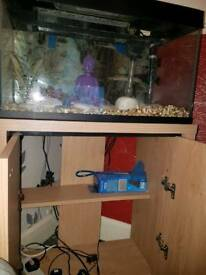 Fish tank (60L) and shelving unit
