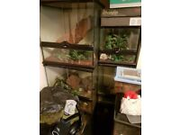 Exo-terra terrarium tanks - various sizes available