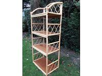 Cane shelving/bookcase Unit