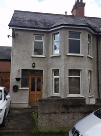 ** DELUXE ROOMS TO RENT ORMEAU ROAD **