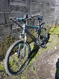 Cube Acid 2013 hard tail mountain bike (Blue/Black)