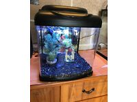 1 ft fish tank 26l full set up with light lid filter gravel ornament all work and all clean in pic