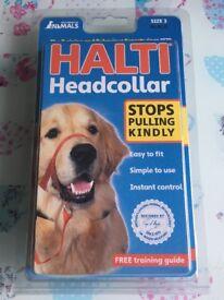 Halti head collar