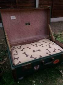 Vintage chest pet bed