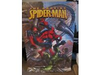 Marvel The Amazing Spiderman Poster New & Sealed X 2 *REDUCED*