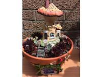 Mushroom Bakery Succulent Fairy Garden!