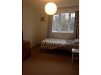 Good size room to let in peaceful part of Hove surrounded by trees.