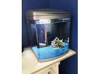 Rena Biocube 50 Ltr Fish Tank