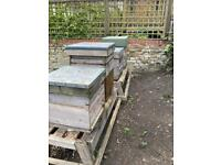 Large garden? Host one of our bee hives!
