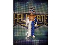 WWE Mattel Basic Wrestling Figures - Rey Mysterio