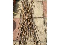 Free bundle various lengths bamboo plant sticks