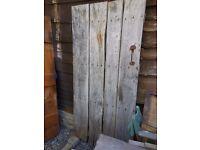 Old Elm Plank door probably 18th century