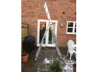 Utility 200 Ladder