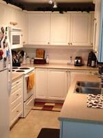 Short term shared condo by hospital. Ideal for hospital interns