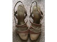 Dorothy Perkins size 7 brand new