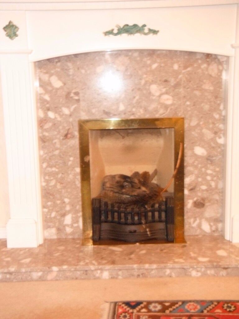 Marble fireplace with White Wooden surround and grate