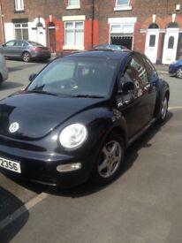 Black beetle for sale