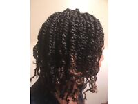 Box braids plaits cornrows loc retwist faux locs crotchet braiding mixed or natural hair braiding