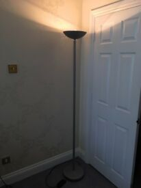 Floor-standing Halogen uplighter