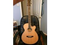 Freshman FA1AM Electro Acoustic Guitar, Excellent condition, also Marshall AS50D Acoustic Amp.