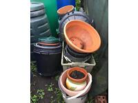 Various plant and seed pots FREE!!!!