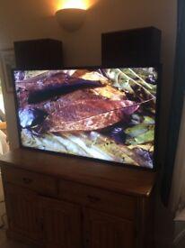 Nec 55inch TV / monitor with remote