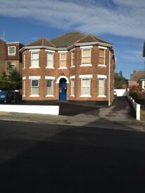 SUNNY FLAT WITH OWN KITCHEN,SHOWER RM,PARKING. NO DEPOSIT REQUIRED.