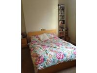2 double rooms available in a shared flat in Clifton - £440/£450 a month