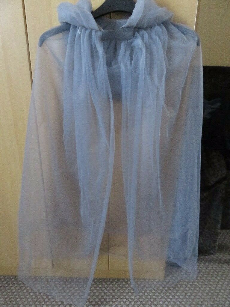 the silver ghost Halloween costume