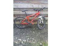 Specialized Rockhopper mountain bike.
