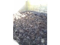 Free composted horse manure