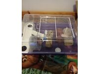 For sale hampster cage and accessories