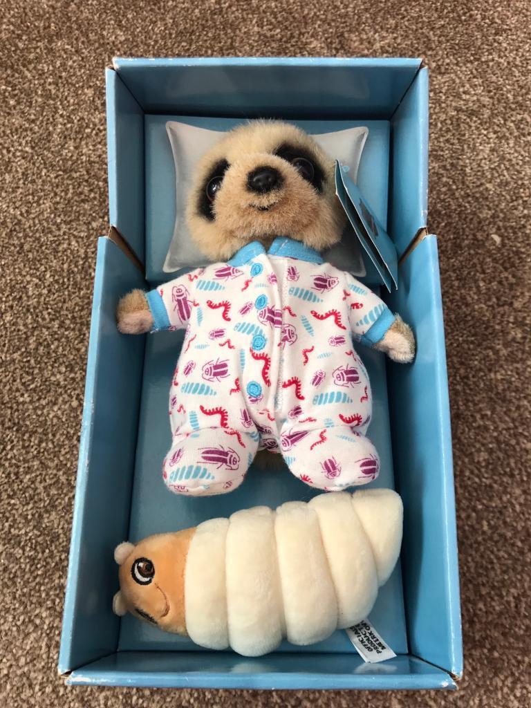 Baby meerkat & grub in box