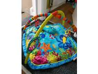 Baby Einstein play mat