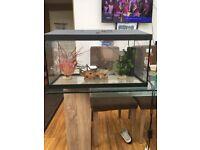 Fish tank Complete Aquarium Fish Tank Set up Heater Filter LED Light Cover 80l