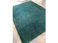Thick teal rug . Very large!