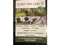 All aspects of tree work undertaken including of disposing of the waste also garden work