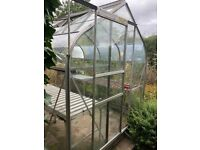 Green House for Sale 8 x 6