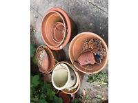 Selection of Terracotta Pots - Free to Collect
