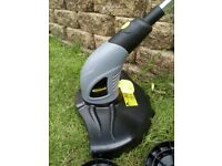 Grass strimmer (electric)