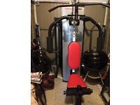 Welder Pro 3000 multi-gym